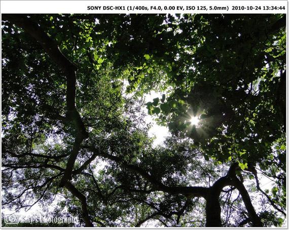 20101024-25.jpg