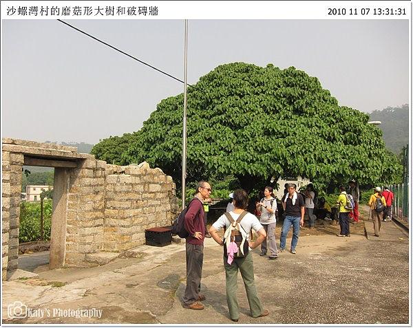 20101107-16.jpg
