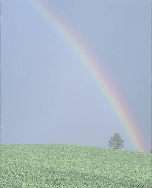 bg_rainbow.jpg