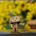 nEO_IMG_照片 149.jpg