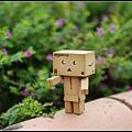 nEO_IMG_照片 255.jpg