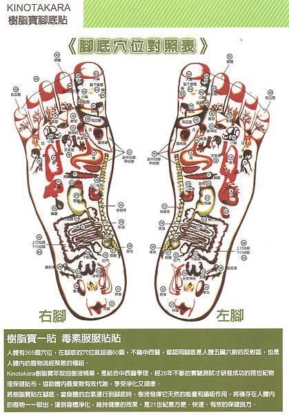 樹脂寶腳底排毒貼1.jpg