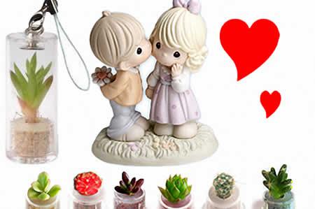 mini-plant-01_gift