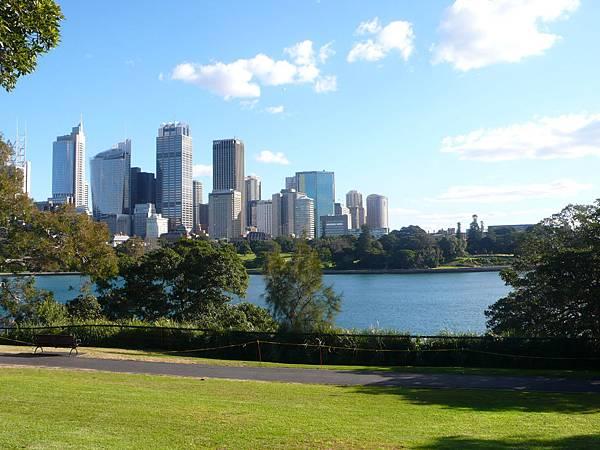 皇家植物園眺望雪梨.JPG