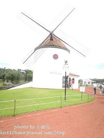 濟州島 223