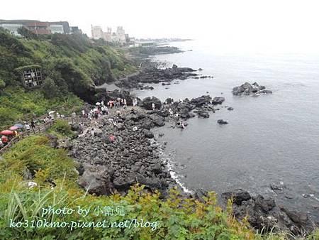 濟州島 263
