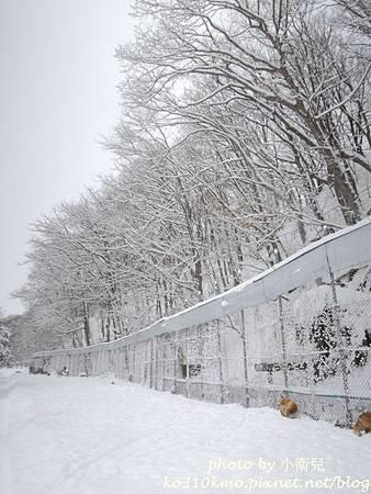 2015北海道 140
