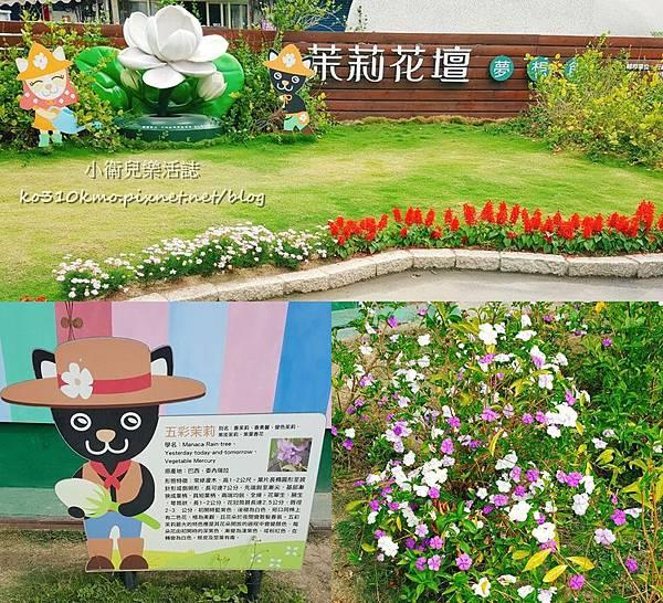 彰化花壇 茉莉花壇夢想館 (6)