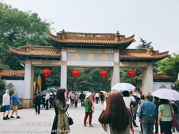 2017無錫太湖黿頭渚國際櫻花節 (16)