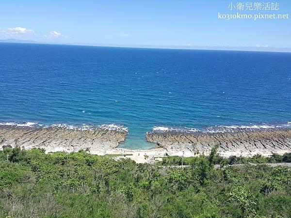 厚石裙礁 (1)