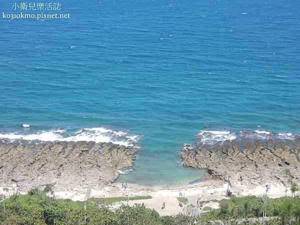 厚石裙礁 (4)
