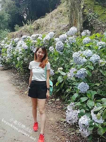 杉林溪-藥花園 (4)