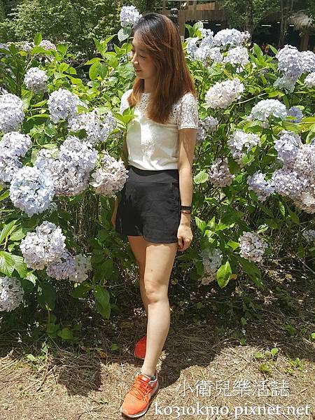 杉林溪-藥花園 (5)
