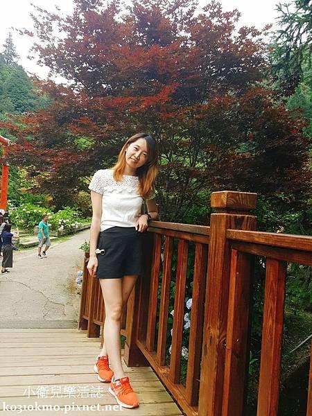 杉林溪-藥花園 (1)