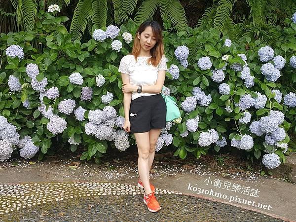 杉林溪-藥花園 (6)