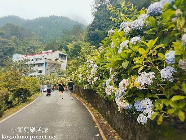 杉林溪-自然教育中心 (4)