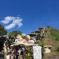 薄荷島BOHOL-世界十大奇景 巧克力山 (3)