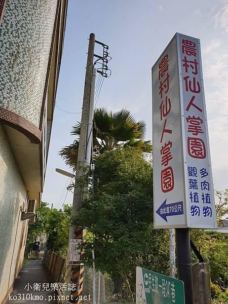 彰化田尾景點.農村仙人掌園 (1)