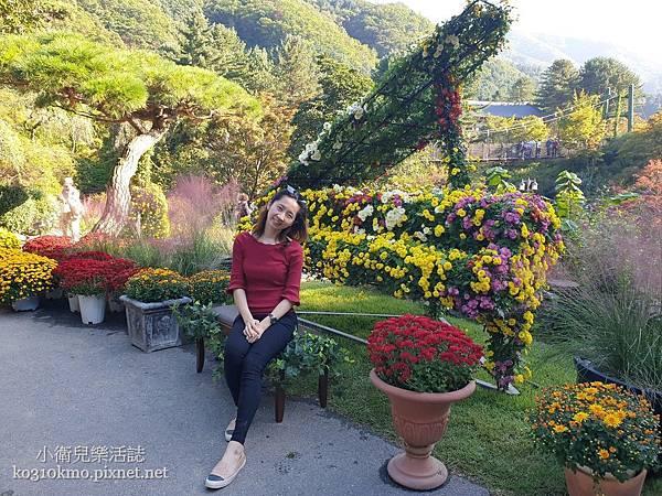 韓國江原道景點-晨靜樹木園