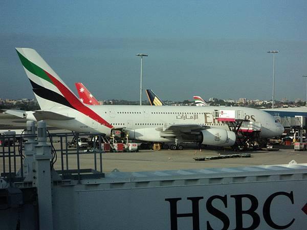 雪梨機場看到空中巴士 A380.jpg