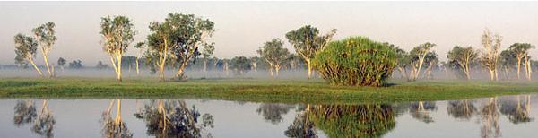 卡卡度國家公園