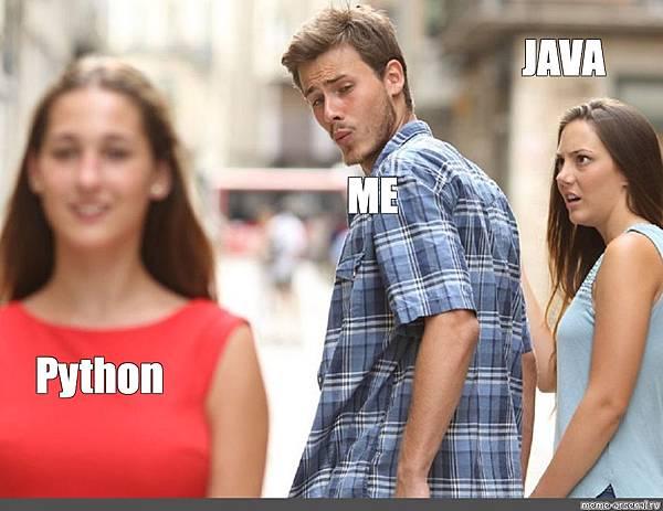 python_or_java_meme.jpg