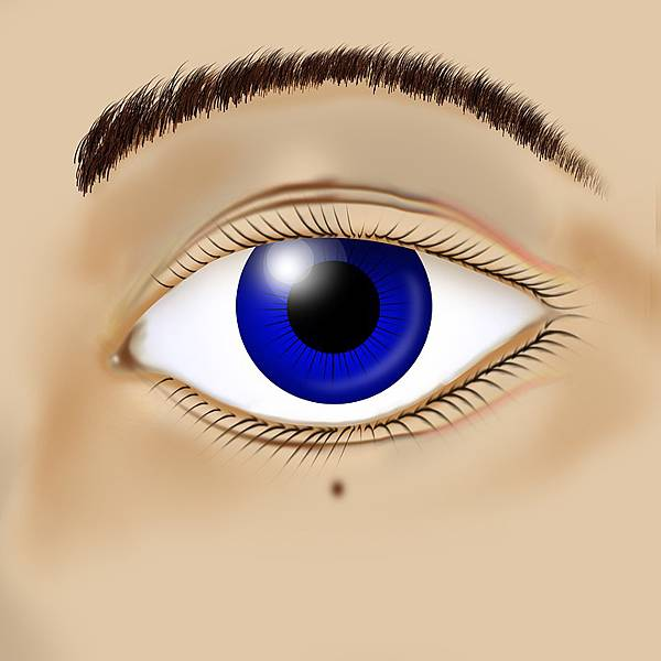人工智慧眼科輔助診斷軟體,幫你診斷視網膜病變!(上)