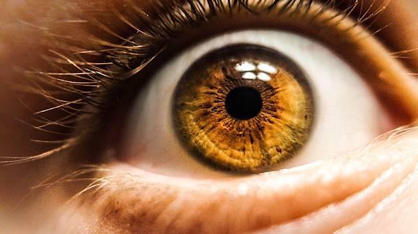 ai-retina-care-2.jpg