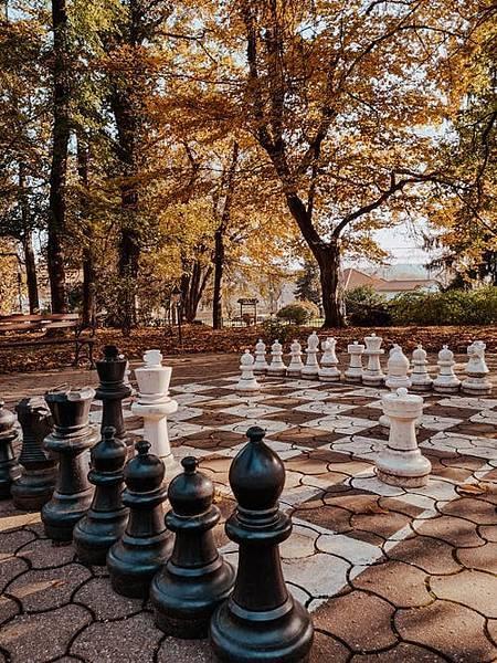 西洋棋和人工智慧的關係竟更上一層樓了!(下)