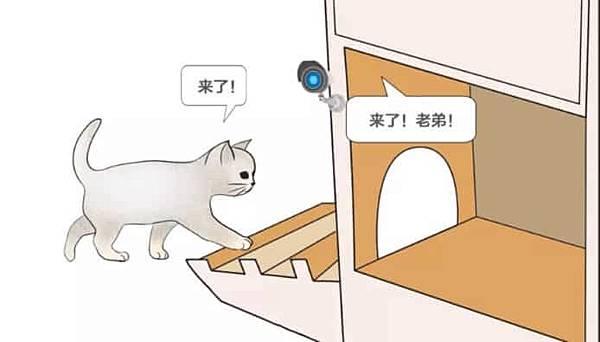 ai-cat-face-detect.jpg