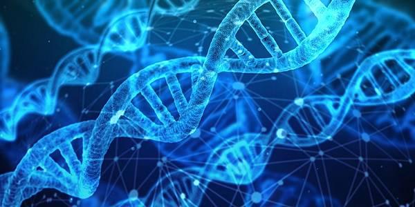 """人工智慧有可能將破解""""蛋白質折疊""""這大謎團!(上)"""