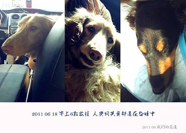 201106我們的花蓮-01.jpg