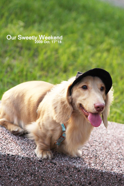 sweetly weekend-18.jpg