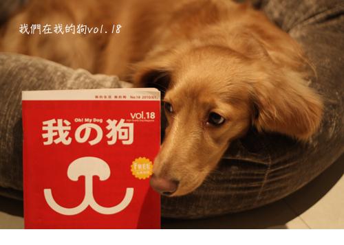 在我的狗-02.jpg