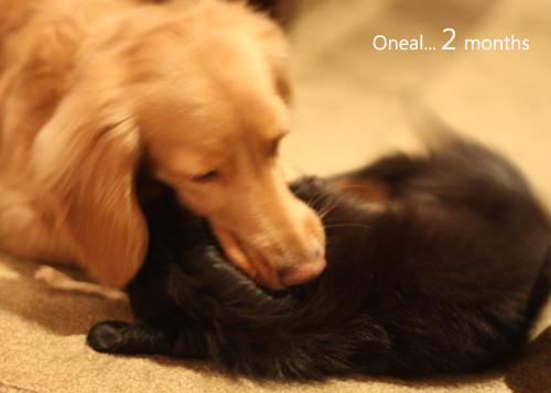 Oneal2months-09.jpg