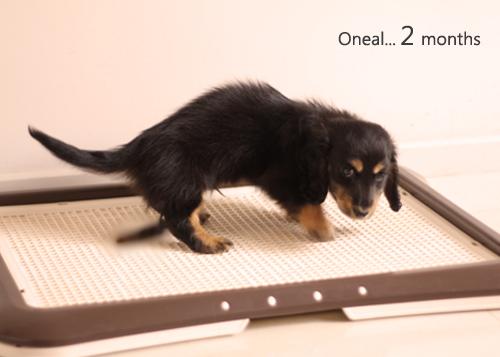 Oneal2months-10.jpg