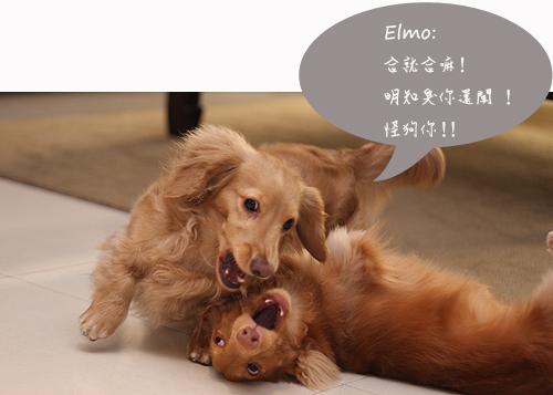 kobe+elmo-07.jpg