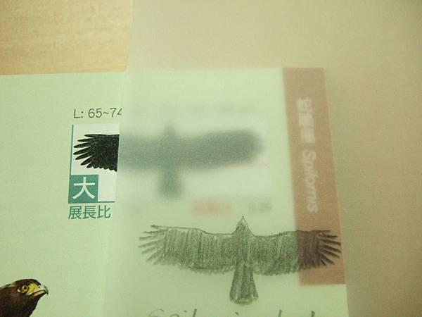 110829 (4).JPG