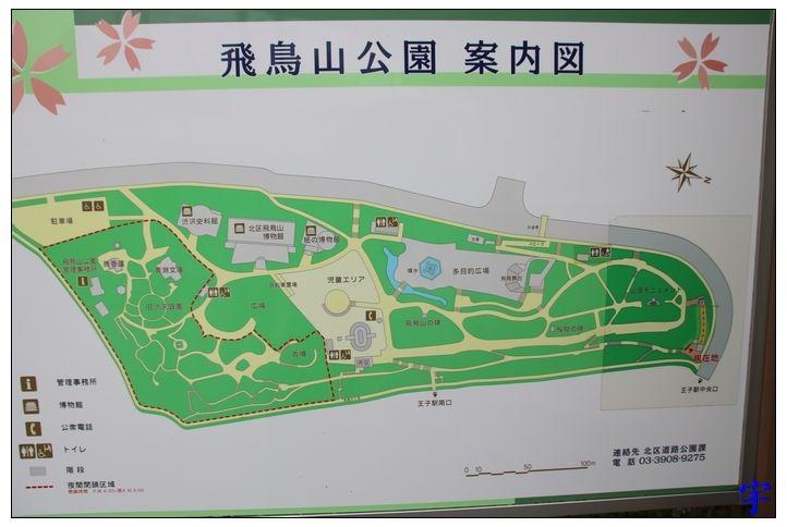 飛鳥山 (2).JPG