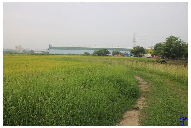 鴨莊露營 (49).JPG