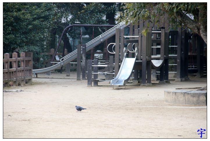 長崎公園 (33).JPG