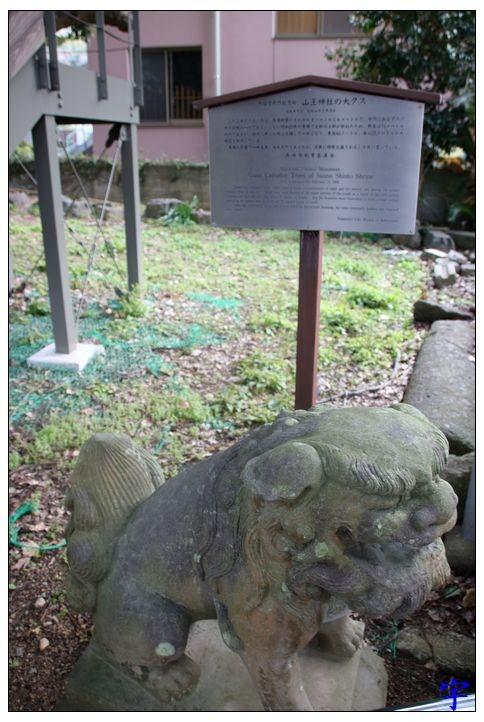 山王神社 (17).JPG