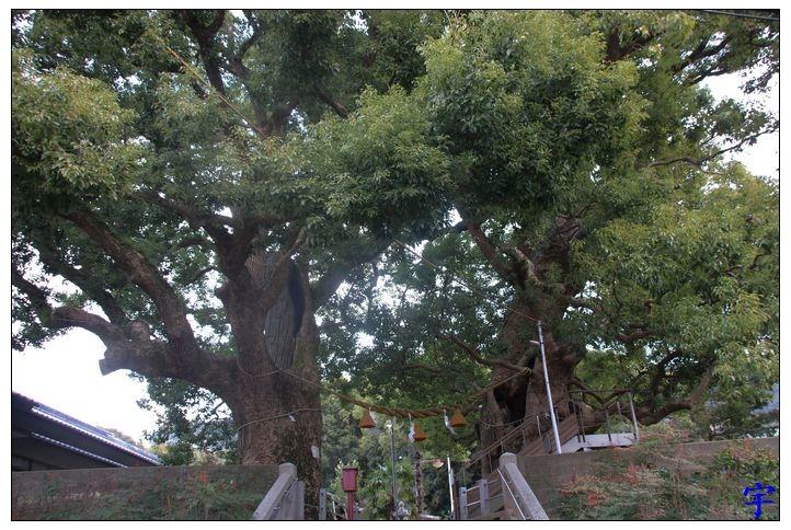 山王神社 (15).JPG