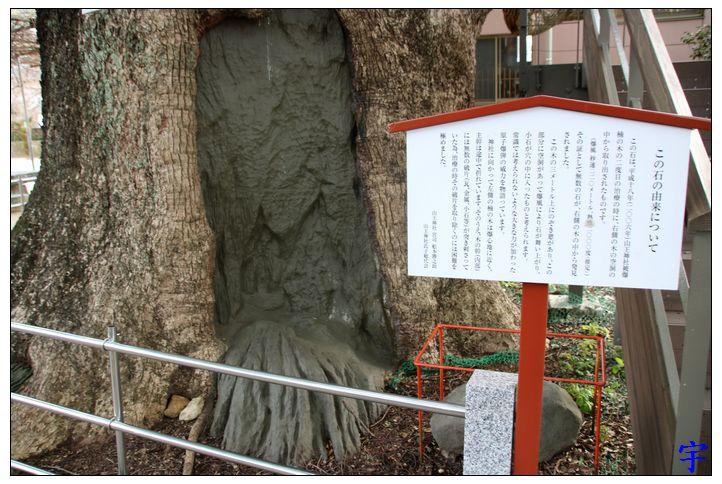 山王神社 (29).JPG