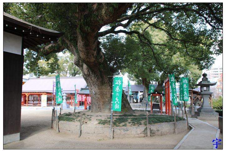 佐嘉神社 (62).JPG