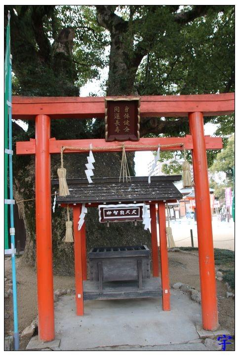 佐嘉神社 (64).JPG