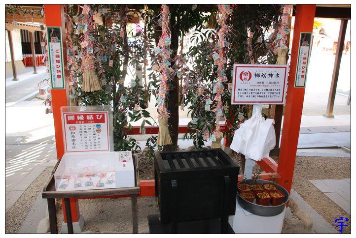 佐嘉神社 (92).JPG