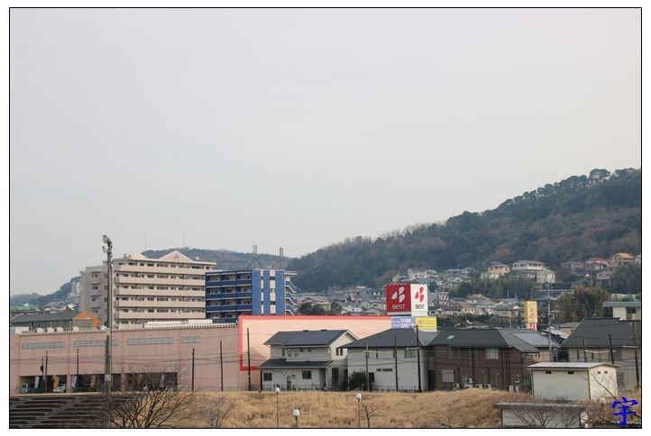 坪井綠川 (34).JPG