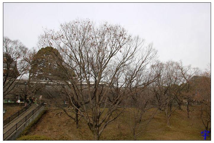 熊本城 (33).JPG