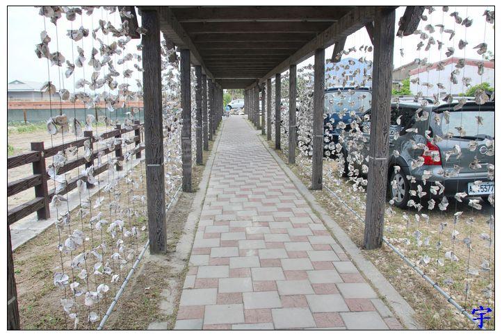 東石自然生態展示館 (4).JPG